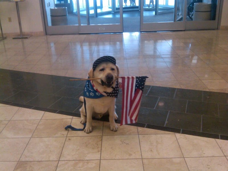 woof with flag at hospital